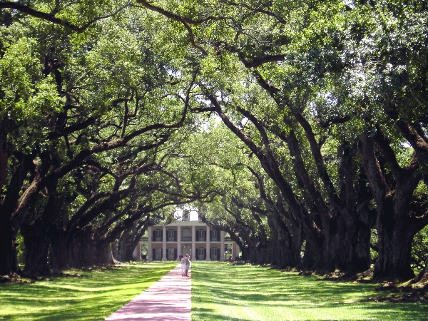 Louisiana - Oak Alley Plantation © AndreaZ